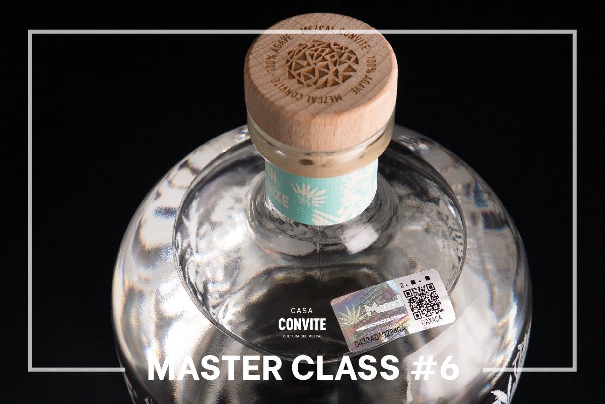 Master Class #6