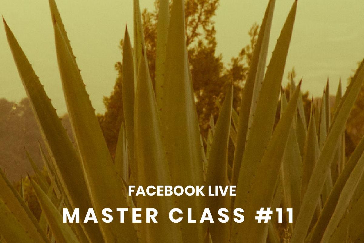 Master Class #11 Online
